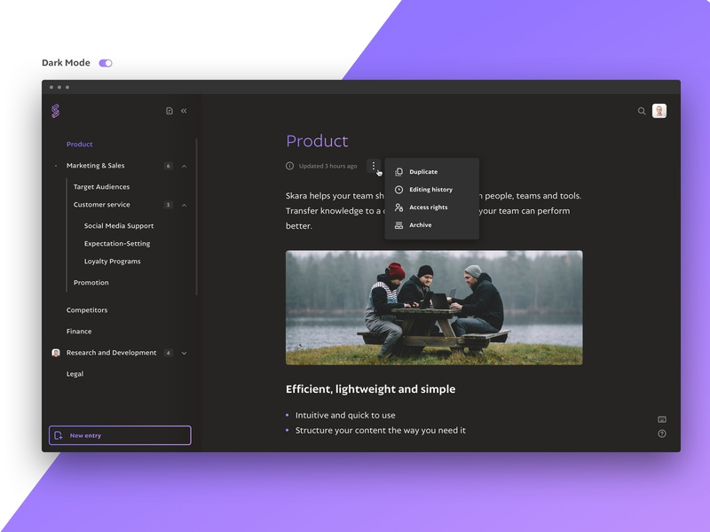 Dark mode for skara company wiki interface knowledge base dark mode ux ui design app
