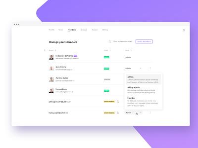 Member Settings for skara company wiki startup interface knowledge base app ux ui design