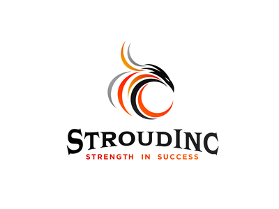 Stroud Inc. consulting branding abstract speed strenght movement bird icon playful dynamic nimble logo bird