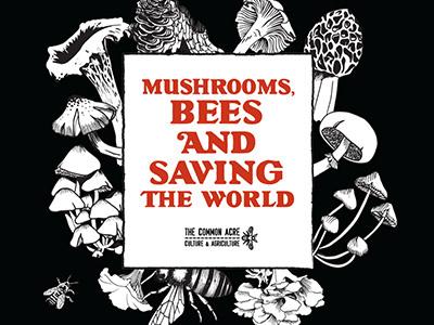 Mushroom Lecture midnight bees morel chanterelle mushrooms typography illustration