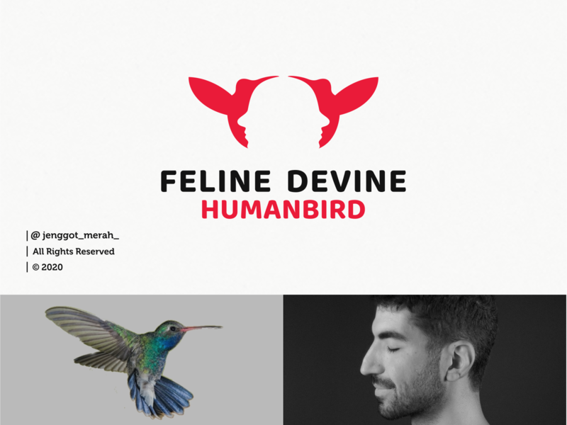 Feline Devine logo design dribbble animals fly branding design brand design face human bird homepage huming bird branding brand identity brandidentity inspiration identity brand inspirations awesome design logo