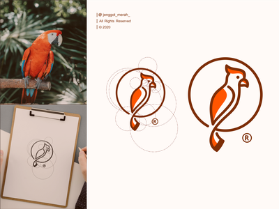 parrot logo design line art parrot creative brand logo bird simple modern illustration toucan nature art graphic zoo vector photographer exotic design identity symbol