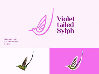 A violet-tailed sylph hummingbird Line Art logo Idea violet nest wings inspiraitons lines minimal creative simple vector symbol mark line art inspirations awesome design logo animal bird hummingbird a violet-tailed sylph