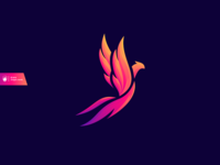 Color Bird Logo Design