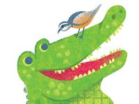 Crocodile Creek- Croc