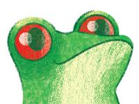 Crocodile Creek- Frog