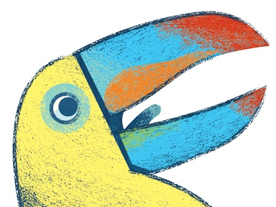 Crocodile Creek- Toucan toucan maraca