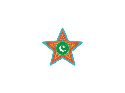 Truck Art Star sticker sitara chand star pakistani art truck art