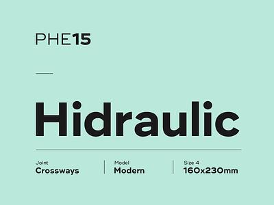 S**** Sans #1 typeface design font type typography
