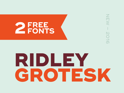 Ridley Grotesk #1 typeface design font type typography