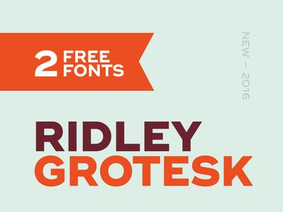 Ridley Grotesk #1