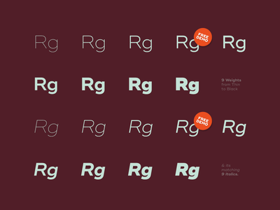 Ridley Grotesk #2 design type free typography font