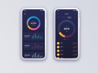 Mono Bank Concept Application