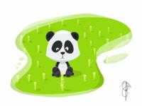Lil' Panda