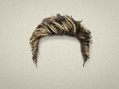 Hair illustration 1/2