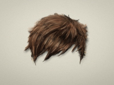 Hair illustration 2/2
