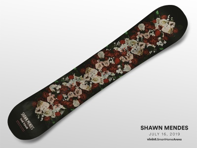 Artist Gifts—Shawn Mendes shawn mendes design art snowboard gift arena