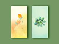 color clean ui cards