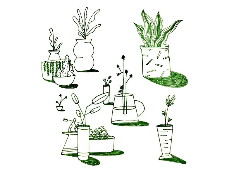 Foliage ink design illustration flower plant plants