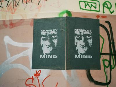 Monkey Mind Poster