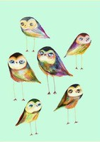 The Little Owls by Ashley Percival