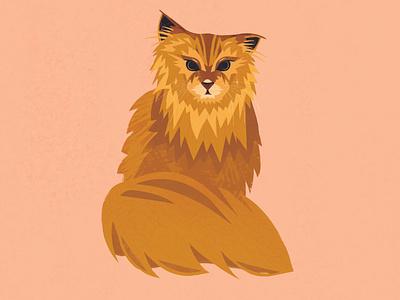Norwegian Forest Cat photoshop illustrator brushes orange kitty
