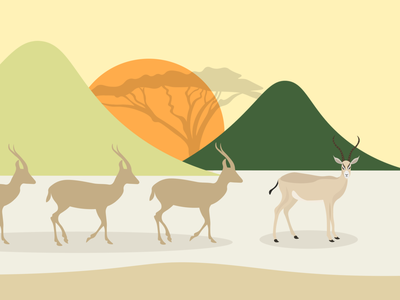 Safari 2 antelope safari vector illustration