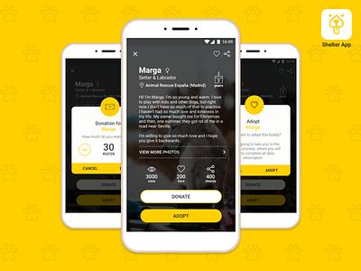 Daily UI #006 - User Profile animals shelter ux ui design daily ui daily challenge user profile app 006
