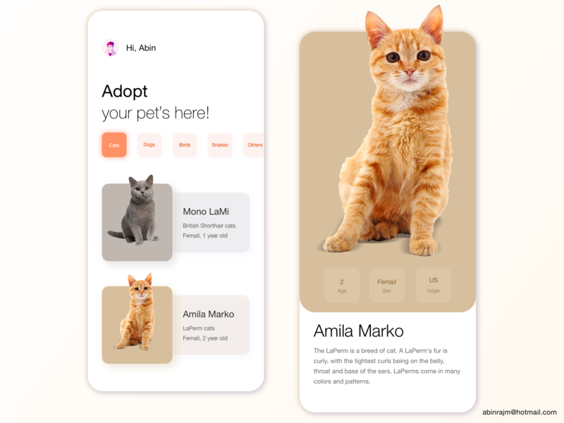 Pets Adoption App pets color theory mobile accessible ux