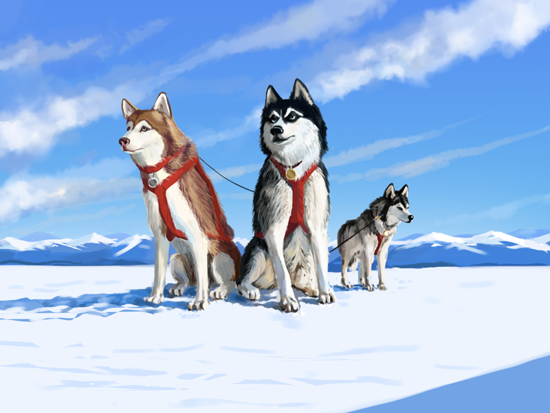 Kings of the North mountain concept art art painting cold design husky dogs winter north illustration