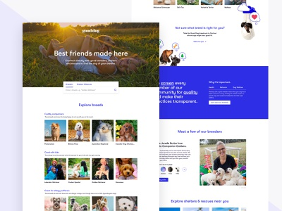 Good Dog Homepage puppies dogs ui web  design ui design illustration homepage design