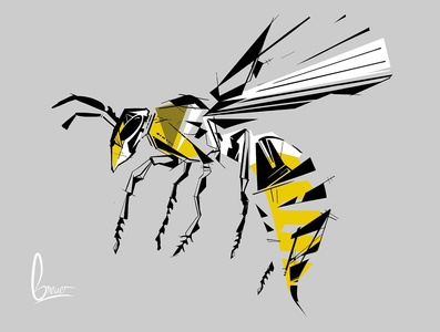 Wasp dynamic painting drawing construct sketch design flat abstract illustration graphic  design
