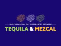 Tequila VS Mezcal