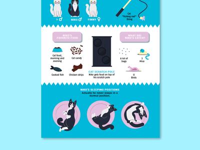 Nikos Infographic 2