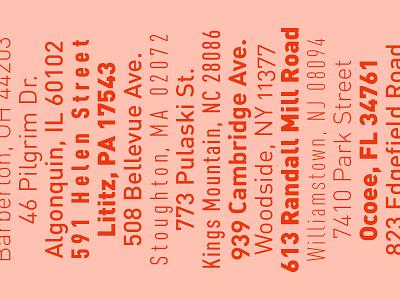 type specimen type din pink typography