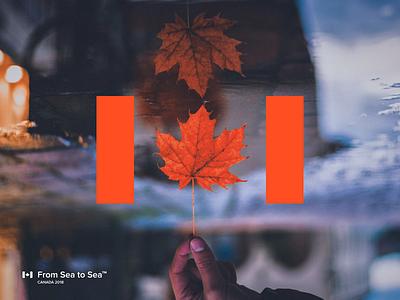 Canada water idea flag identity branding logo maple leaf sea country canada