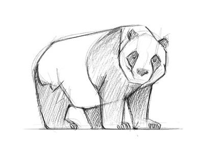 Panda sketch bamboo apple illustration pencil ipad drawing sketch