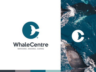 WhaleCentre ocean app whale design drawing identity branding logo icon