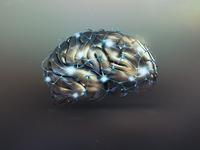 brainzap