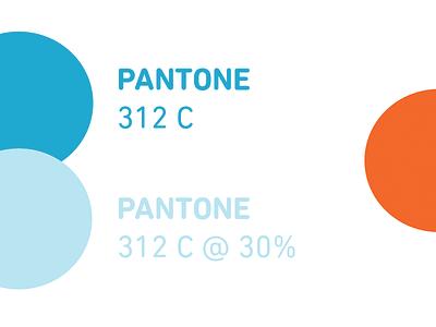 Brand Guide branding identity colours