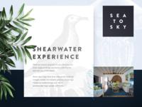 Shearwater UI Board