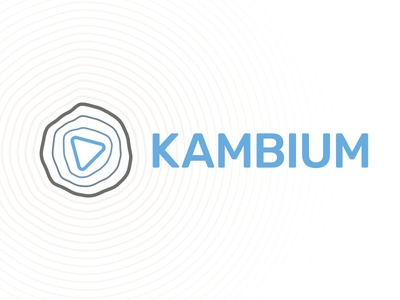 Kambium Logo generative signet branding personal development mediation beige sand blue triangle logo kambium