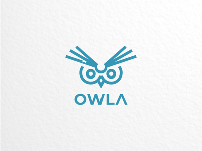 owl book logodesigner branding graphicdesign doublemeaning logodesigns logodesign animal brand illustration vector logo
