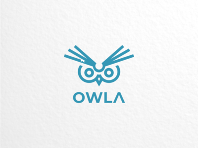 owl book logodesigner branding graphicdesign doublemeaning logodesigns logodesign animal brand illustration vector logo