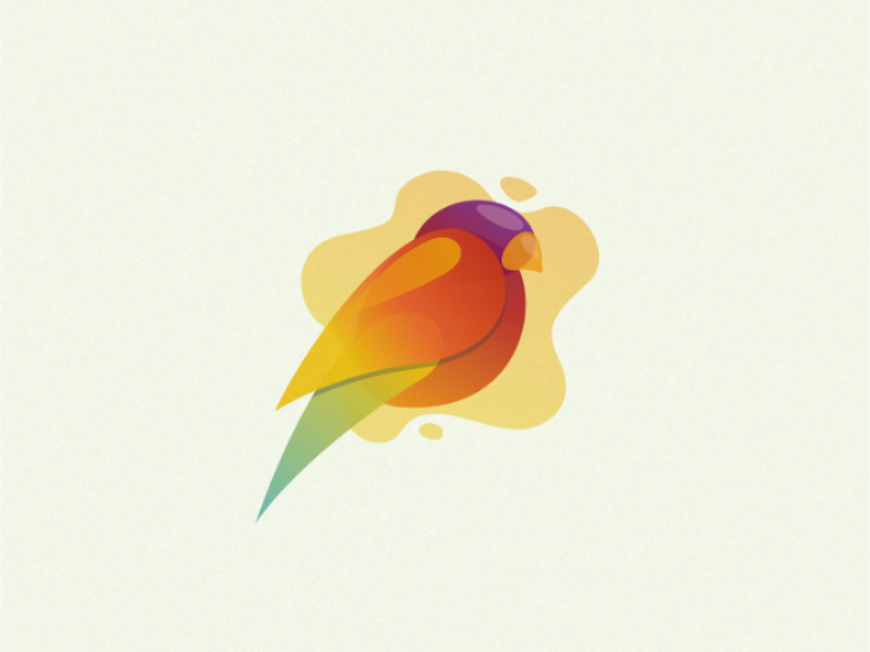 Bird colorful logoinspiration illustration vector logo animal bird
