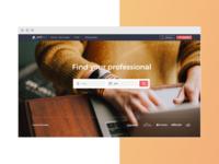 Professional's website