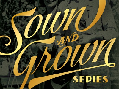 Sown & Grown - Bale Breaker sown grown can homegrown vintage typography gold brewery ipa package design packaging craft beer beer