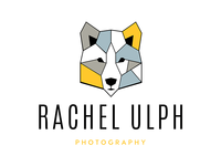Geometric Wolf Logo Design for Photographer