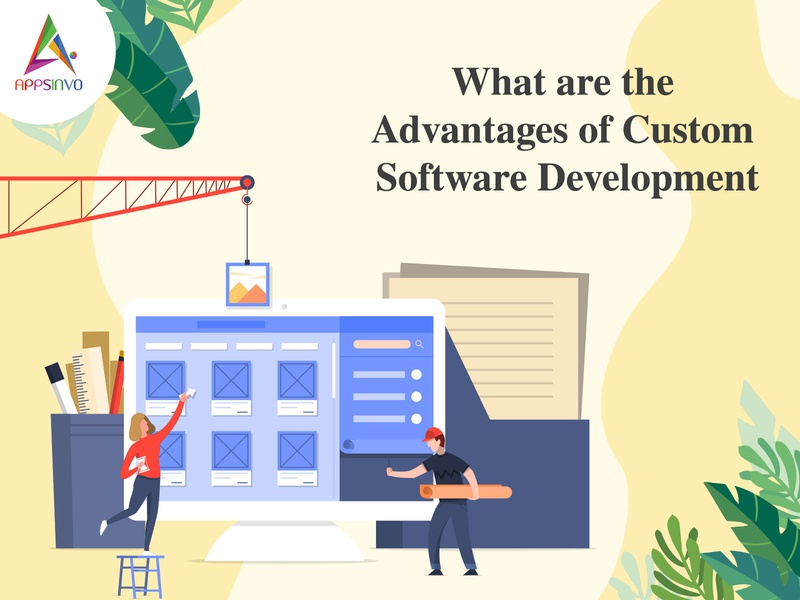 Appsinvo - What are the Advantages of Custom Software Developmen