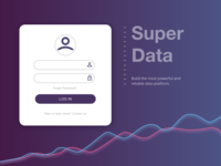 Log in screen for a Data Company
